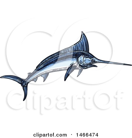 Clipart of a Sketched Swordfish - Royalty Free Vector Illustration by Vector Tradition SM