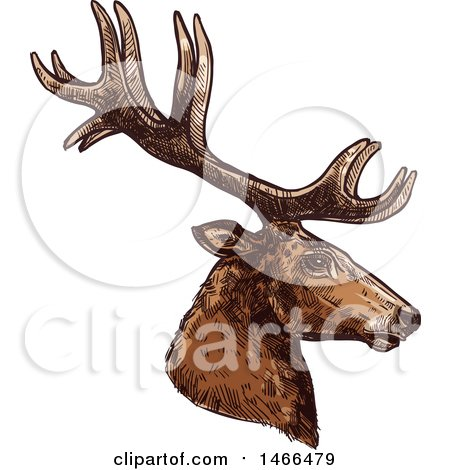 Clipart of a Sketched Profiled Deer or Carbiou Head - Royalty Free Vector Illustration by Vector Tradition SM