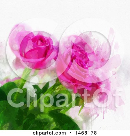 Clipart of a Watercolor Painting of Pink Roses - Royalty Free Vector Illustration by KJ Pargeter