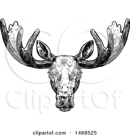 Clipart of a Sketched Black and White Elk - Royalty Free Vector Illustration by Vector Tradition SM