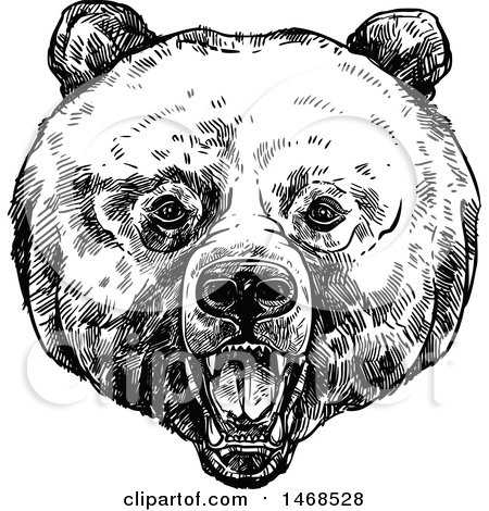 Clipart of a Sketched Black and White Bear Face - Royalty Free Vector Illustration by Vector Tradition SM