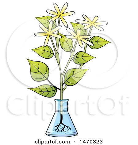 Clipart of a Flask with Flowers - Royalty Free Vector Illustration by Lal Perera