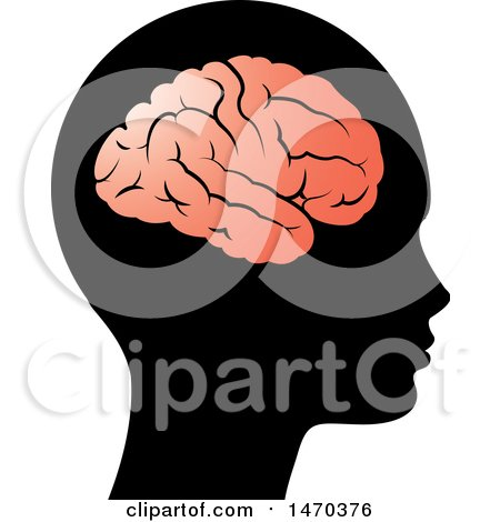 Clipart of a Profiled Head with a Visible Brain - Royalty Free Vector Illustration by Lal Perera