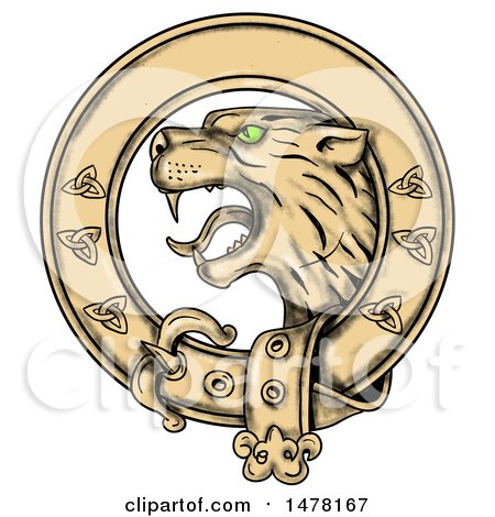 Clipart of a Scottish Wildcat Highlands Tiger in a Celtic Belt, on a White Background - Royalty Free Illustration by patrimonio