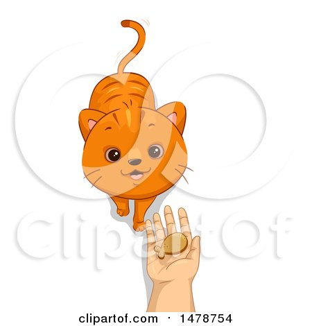 Clipart of a Cat Looking up to a Hand Holding a Treat - Royalty Free Vector Illustration by BNP Design Studio