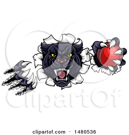 Clipart of a Vicious Roaring Black Panther Mascot Shredding Through a Wall with a Cricket Ball - Royalty Free Vector Illustration by AtStockIllustration