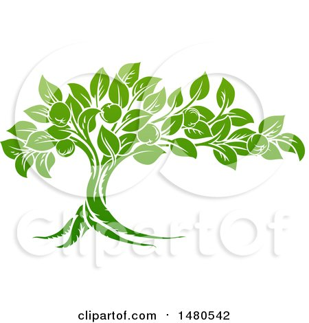 Clipart of a Green Apple Tree - Royalty Free Vector Illustration by AtStockIllustration