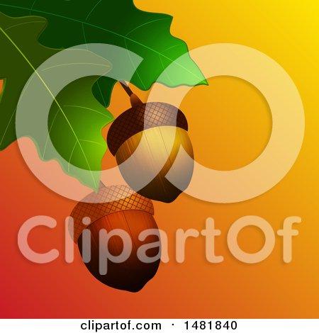 Clipart of 3d Acorns and Oak Leaves - Royalty Free Vector Illustration by elaineitalia