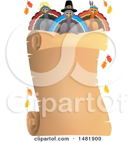 Clipart of a Scroll with Thanksgiving Turkey Birds - Royalty Free Vector Illustration by visekart