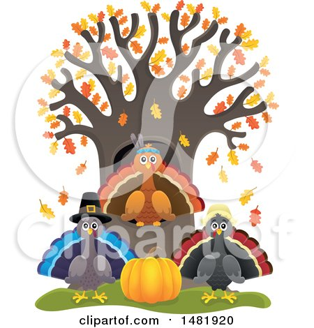 Clipart of a Group of Thanksgiving Native and Pilgrim Turkey Birds at a Tree - Royalty Free Vector Illustration by visekart
