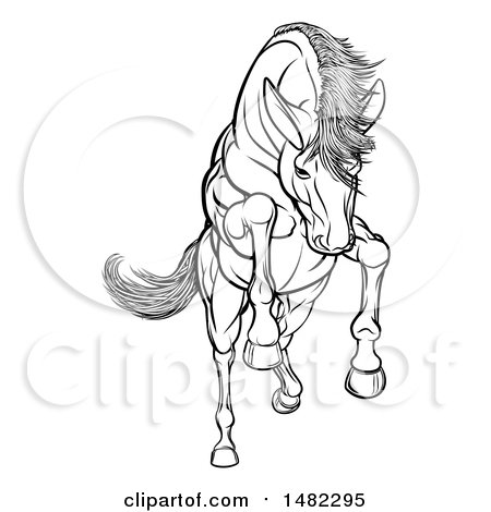 Clipart of a Black and White Rearing, Charging or Jumping Horse - Royalty Free Vector Illustration by AtStockIllustration