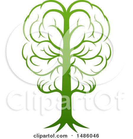 Clipart of a Gradient Green Brain Tree - Royalty Free Vector Illustration by AtStockIllustration
