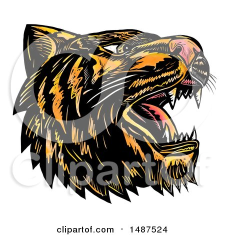 Clipart of a Roaring Tiger Head, on a White Background - Royalty Free Illustration by patrimonio
