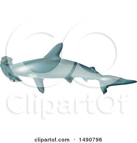 Clipart of a Scalloped Hammerhead Shark - Royalty Free Vector Illustration by dero