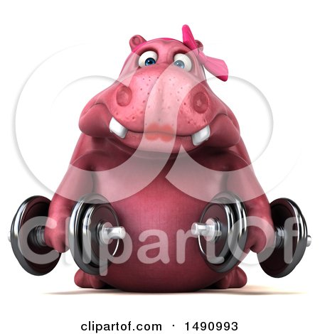 Clipart of a 3d Pink Henrietta Hippo Character Holding Dumbbells, on a White Background - Royalty Free Illustration by Julos