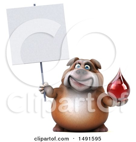 Clipart of a 3d Bill Bulldog Mascot Holding a Blood Drop, on a White Background - Royalty Free Illustration by Julos
