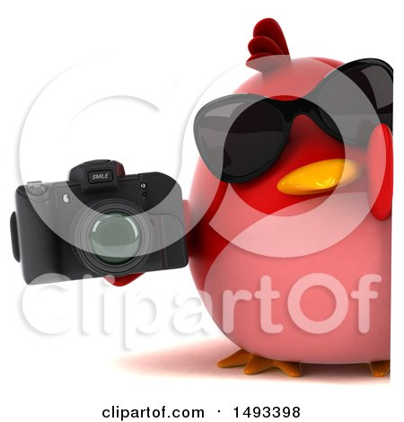 Clipart of a 3d Red Bird Holding a Camera, on a White Background - Royalty Free Illustration by Julos