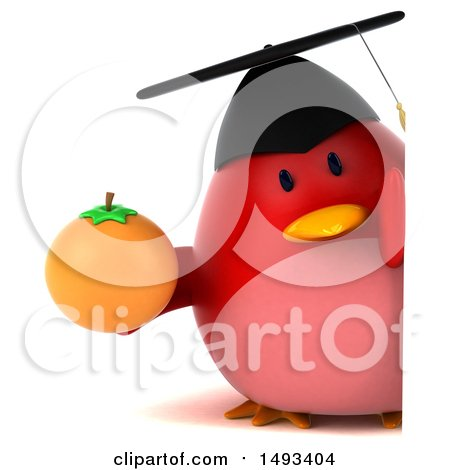 Clipart of a 3d Red Bird Graduate Holding an Orange, on a White Background - Royalty Free Illustration by Julos