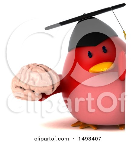 Clipart of a 3d Red Bird Graduate Holding a Brain, on a White Background - Royalty Free Illustration by Julos