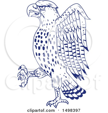 Clipart of a Sketched Sharp Shinned Hawk - Royalty Free Vector Illustration by patrimonio