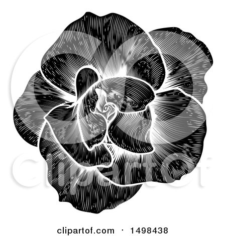Clipart of a Black and White Engraved Rose Flower - Royalty Free Vector Illustration by AtStockIllustration