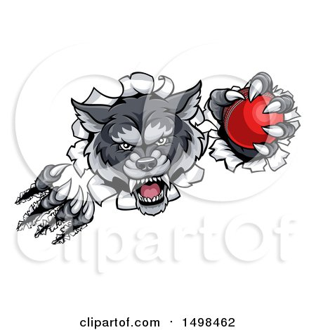 Clipart of a Gray Wolf Slashing Through a Wall with a Cricket Ball - Royalty Free Vector Illustration by AtStockIllustration