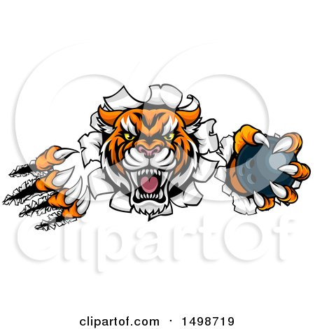 Clipart of a Vicious Tiger Mascot Slashing Through a Wall with a Bowling Ball - Royalty Free Vector Illustration by AtStockIllustration