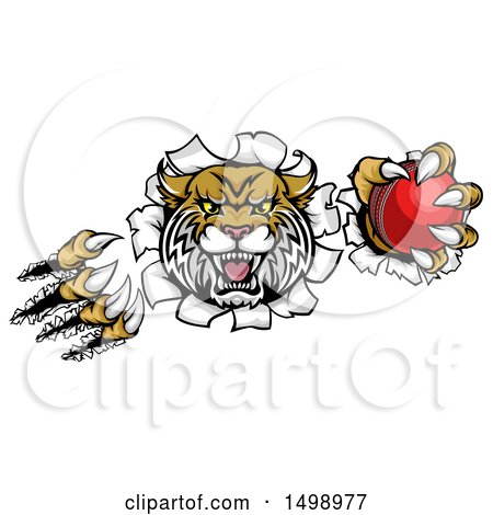 Clipart of a Vicious Wildcat Mascot Shredding Through a Wall with a Cricket Ball - Royalty Free Vector Illustration by AtStockIllustration