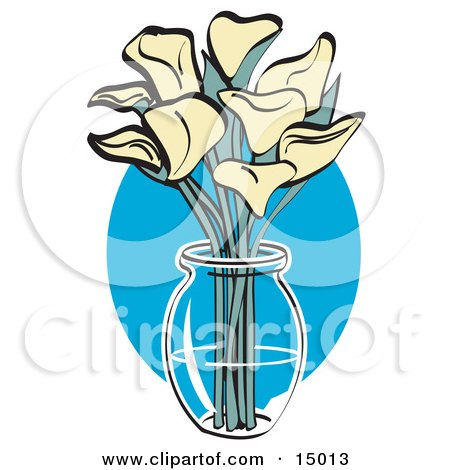 Bunch Of Cream Calla Lilies In A Clear Glass Vase Over A Blue Oval on Easter  Posters, Art Prints