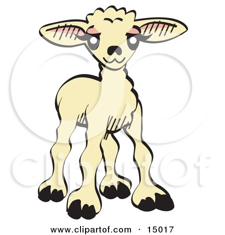 Sweet Baby Lamb Clipart Illustration by Andy Nortnik