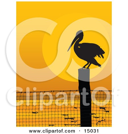 Lone Pelican Bird On A Coastal Fence Post, Silhouetted Against An Orange Sunset Clipart Illustration by Maria Bell