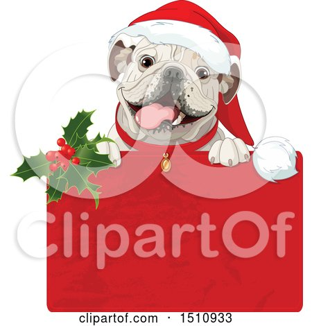 Clipart of a Cute Bulldog Popping out of a Christmas Gift Box - Royalty Free Vector Illustration by Pushkin