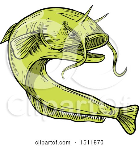 Clipart of a Sketched Green Giant Devil Catfish Goonch - Royalty Free Vector Illustration by patrimonio