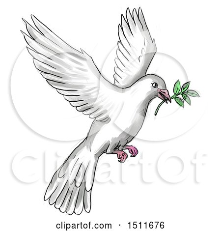 Clipart of a Sketched and Watercolor Peace Dove Flying with a Branch, on a White Background - Royalty Free Illustration by patrimonio