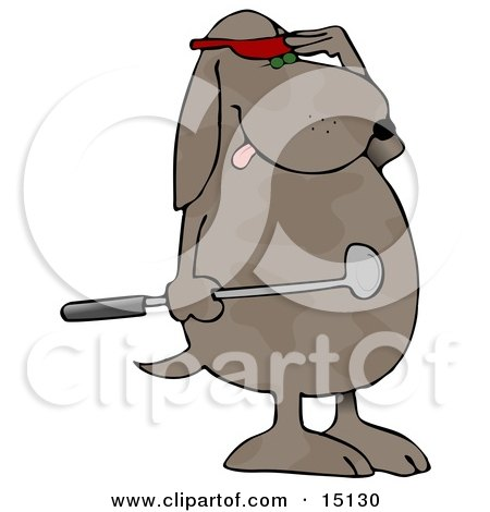 Humanlike Dog Standing On His Hind Legs Holding A Club And Wearing A Red Visor And Shielding His Eyes To Watch His Ball After Just Hitting It At A Golf Course Graphic Clipart