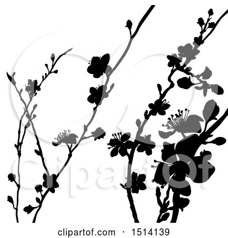 Clipart of Black Silhouetted Blossom Branches - Royalty Free Vector Illustration by AtStockIllustration