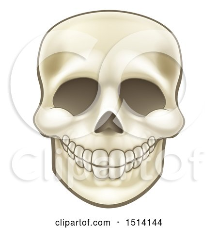 Clipart of a Grinning Human Skull - Royalty Free Vector Illustration by AtStockIllustration