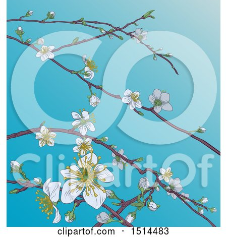 Clipart of a Background of Branches with Spring Blossoms over Blue Sky - Royalty Free Vector Illustration by AtStockIllustration