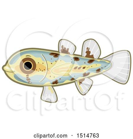 Clipart of a Cute Philippine Pandaka Pygmea Fish - Royalty Free Vector Illustration by BNP Design Studio