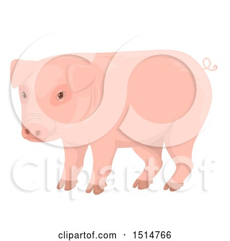 Clipart of a Pink Curly Tailed Pig - Royalty Free Vector Illustration by BNP Design Studio