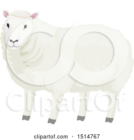 Clipart of a Wooly White Sheep - Royalty Free Vector Illustration by BNP Design Studio