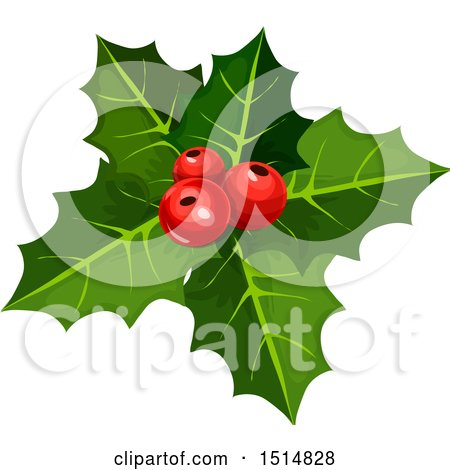 Clipart of Christmas Holly - Royalty Free Vector Illustration by Vector Tradition SM