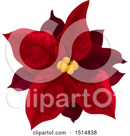 Clipart of a Red Christmas Poinsettia - Royalty Free Vector Illustration by Vector Tradition SM
