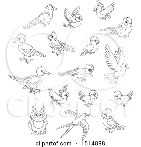 Clipart of Black and White Birds - Royalty Free Vector Illustration by Alex Bannykh