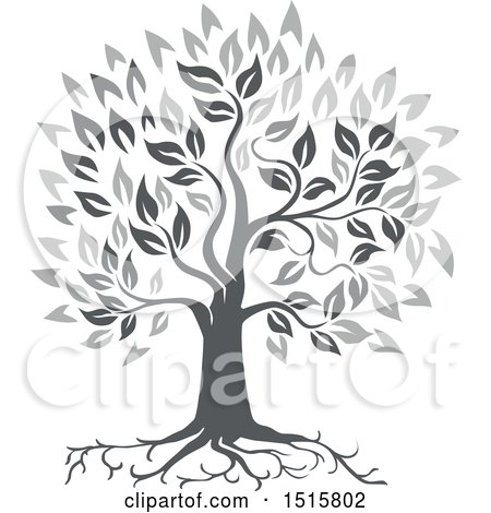 Clipart of a Grayscale Oak Tree with Roots and Leaves - Royalty Free Vector Illustration by patrimonio