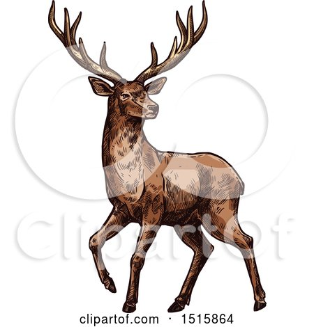 Clipart of a Sketched Reindeer - Royalty Free Vector Illustration by Vector Tradition SM