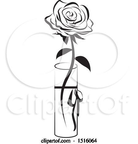 Single black picture free rose Single flower