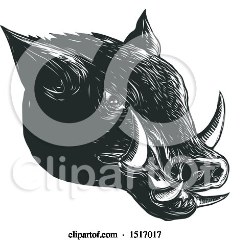 Clipart of a Razorback Boar Head, in Black and White Woodcut - Royalty Free Vector Illustration by patrimonio