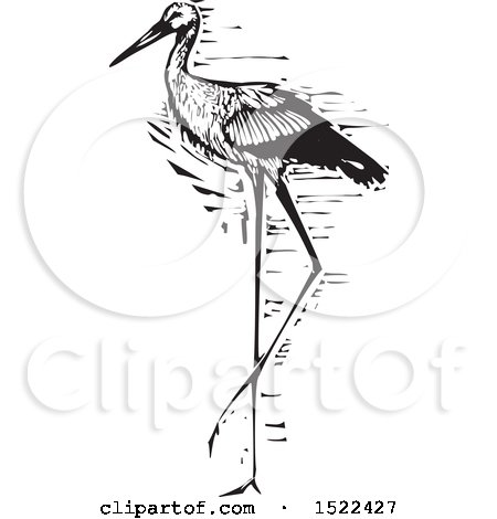 Clipart of a Beautiful Stork Bird, Black and White Woodcut - Royalty Free Vector Illustration by xunantunich
