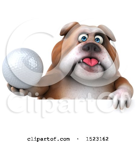 Clipart of a 3d Bulldog Holding a Golf Ball, on a White Background - Royalty Free Illustration by Julos